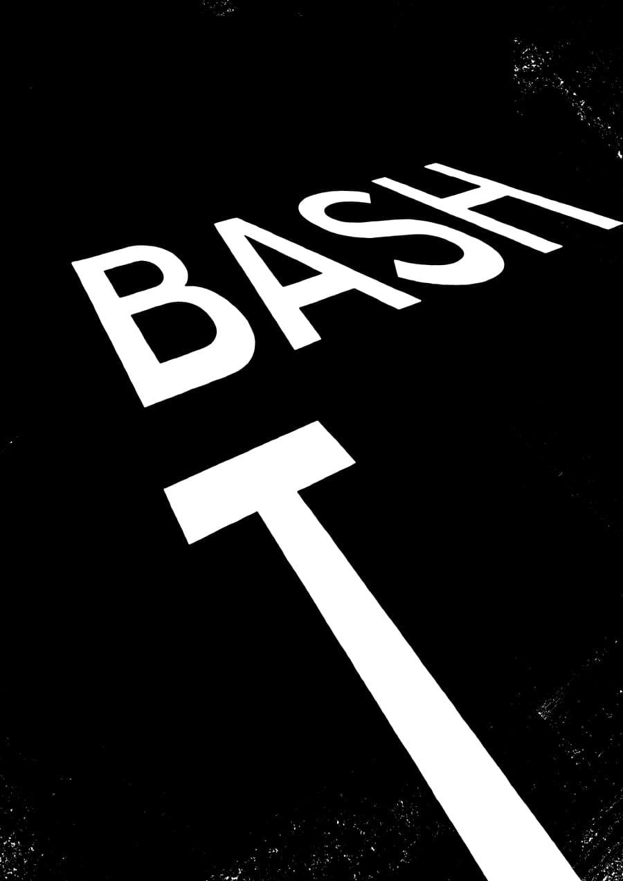 Poster: Roads 05 w/ Bash, T